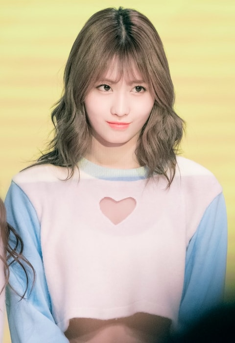 Momo as seen at Twice Sudden Attack Fan Meeting in March 2017