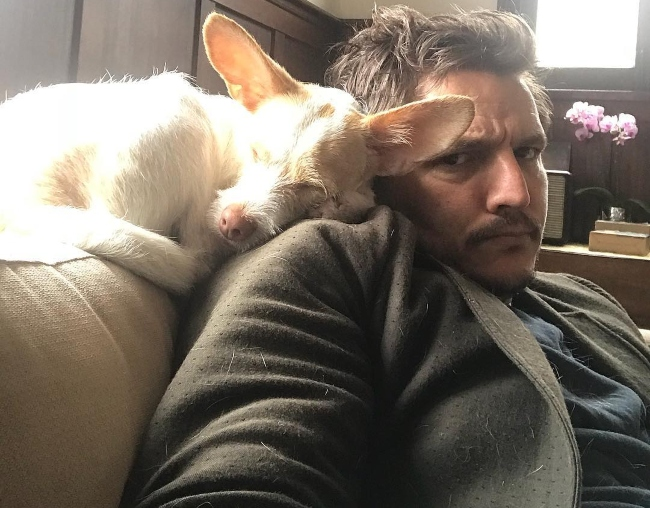 Pedro Pascal in a selfie with his dog in March 2018