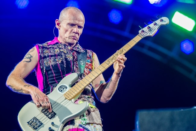 Flea while performing with his band in June 2016
