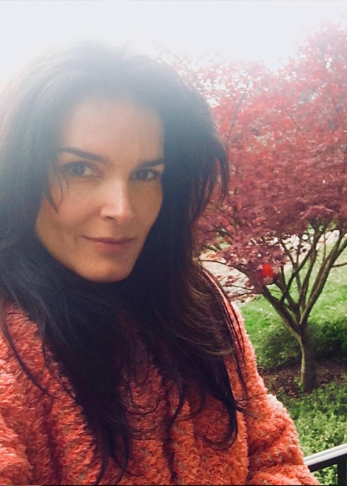 Angie Harmon in an Instagram Selfie in November 2017