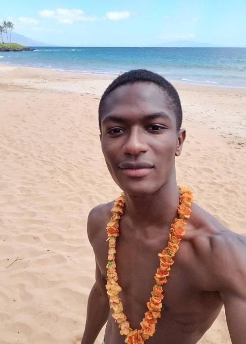Hamid Onifade in a shirtless selfie in Wailea-Makena, Hawaii in February 2017