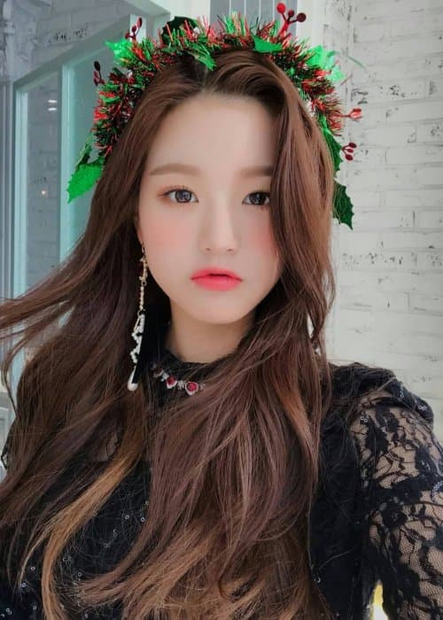 Jang Wonyoung in a selfie in December 2018