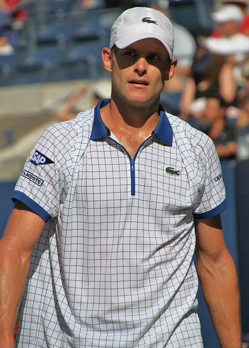 Andy Roddick at the US Open 2010 tournament