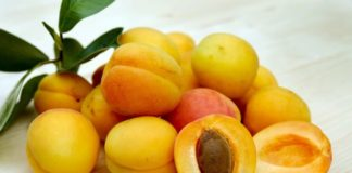 Benefits of Eating Apricot
