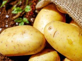 Benefits of Eating Potato