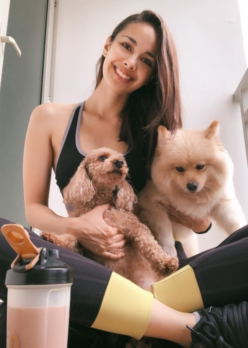 Megan Young as seen in a picture with her pups Melo and Yogi in September 2018