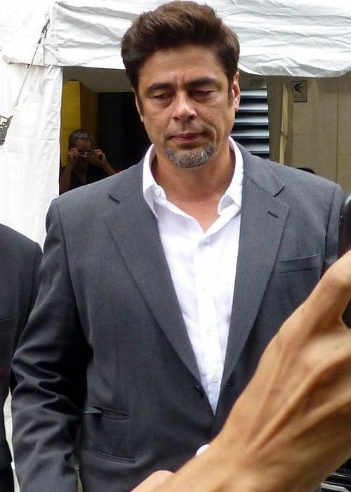 Benicio del Toro at the 2014 Toronto Film Festival
