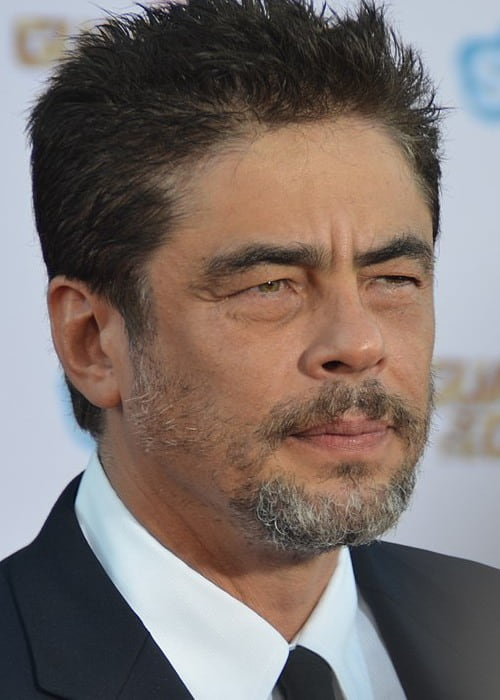 Benicio del Toro at the premiere of Guardians of the Galaxy in July 2014