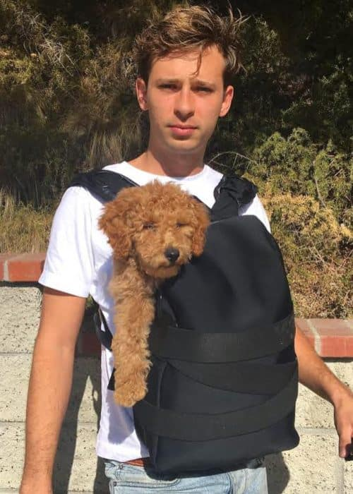 Flume with his dog as seen in September 2018