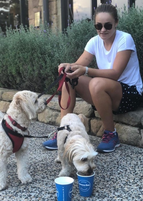 Ashleigh Barty with her dogs as seen in October 2018