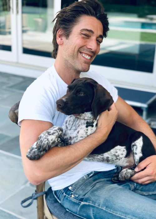 David Muir with his dog as seen in June 2019