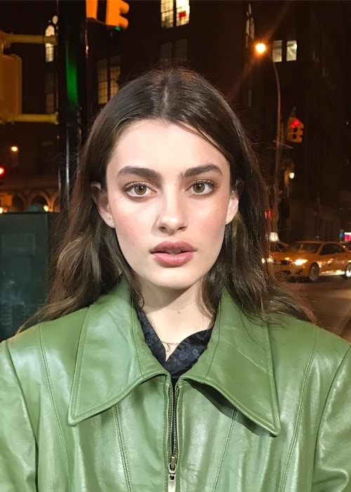 Diana Silvers as seen all glammed-up in February 2017