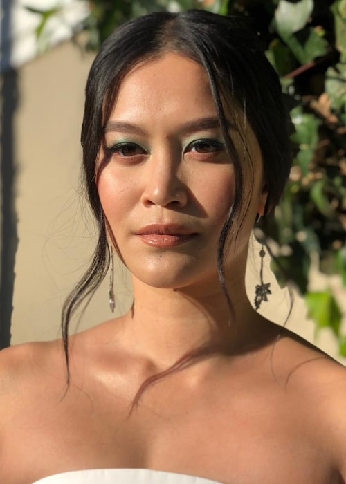 Dianne Doan as seen in a picture looking glamorous in January 2019