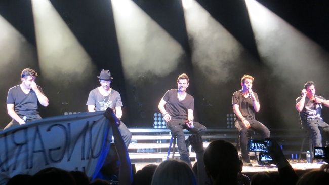 (From left to right) Jonathan Knight, Donnie Wahlberg, Jordan Knight, Joey McIntyre, and Danny Wood at the European Tour in 2014