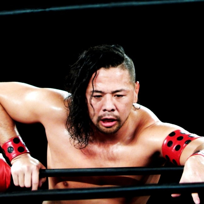 Shinsuke Nakamura as seen in May 2015