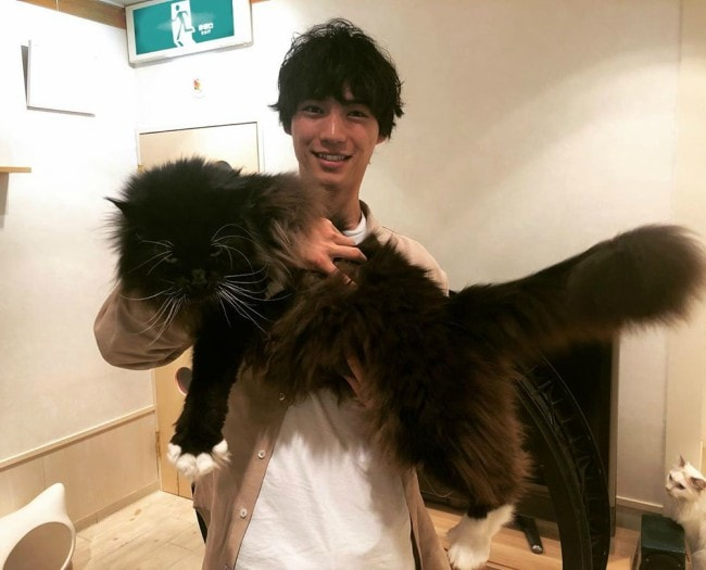 Sota Fukushi with his cat as seen in May 2019