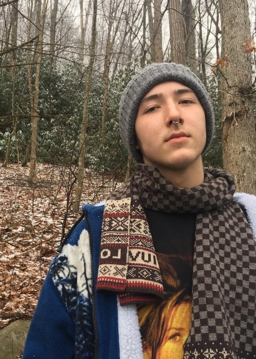 Frankie Jonas as seen while posing for the camera in February 2017