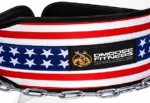 DMoose Fitness Premium Dip Belt Review