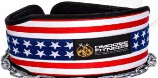 DMoose Fitness Premium Dip Belt Review