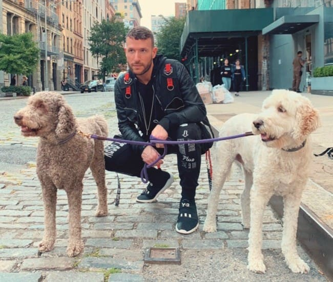 Don Diablo with his dogs as seen in September 2019