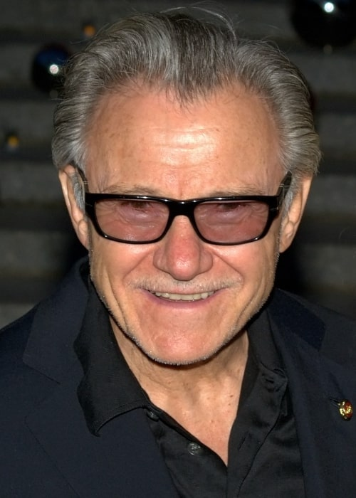 Harvey Keitel as seen in a picture taken at the 2010 Tribeca Film Festival