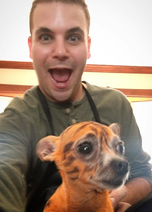Alan Aisenberg as seen while taking a selfie with a chihuahua painted like a tiger in June 2017