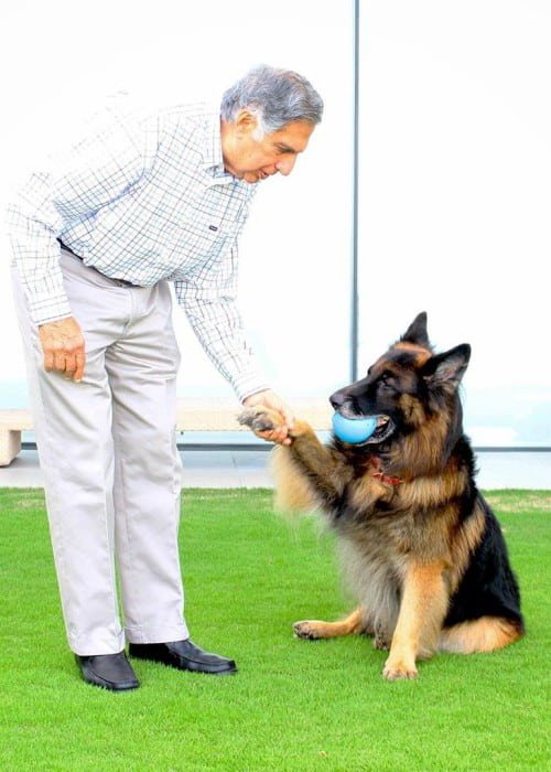 Ratan Tata with his dog