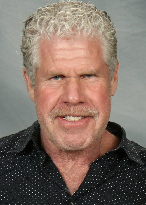 Ron Perlman at Paradise City Comic Con in December 2016