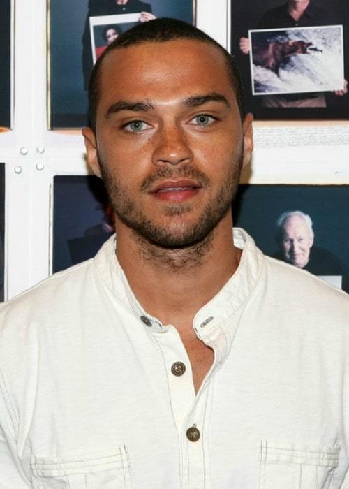Jesse Williams as seen in 2008
