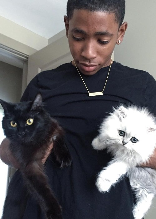 Ken Walker with his cats as seen in June 2016