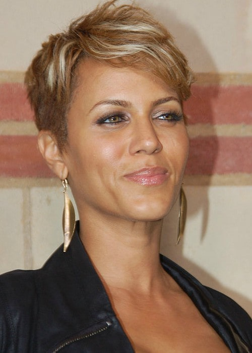 Nicole Ari Parker at a performance of The Hot Chocolate Nutcracker in December 2010
