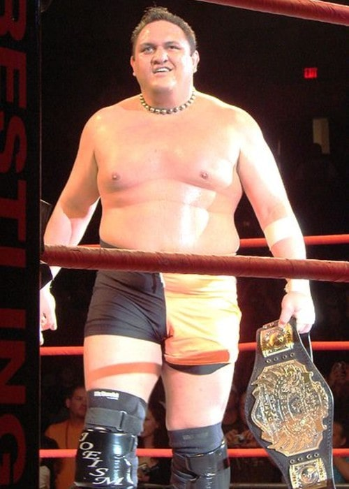 Samoa Joe as seen in June 2008
