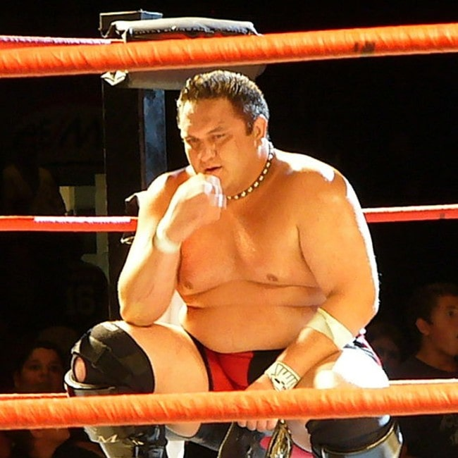 Samoa Joe as seen in September 2008