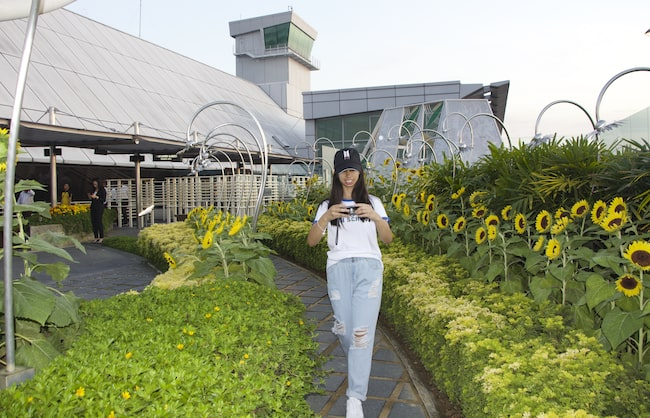 Andrea Noay at Singapore Airport's Sunflower Garden in 2019