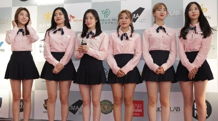 Berry Good Members, Tour, Information, Facts