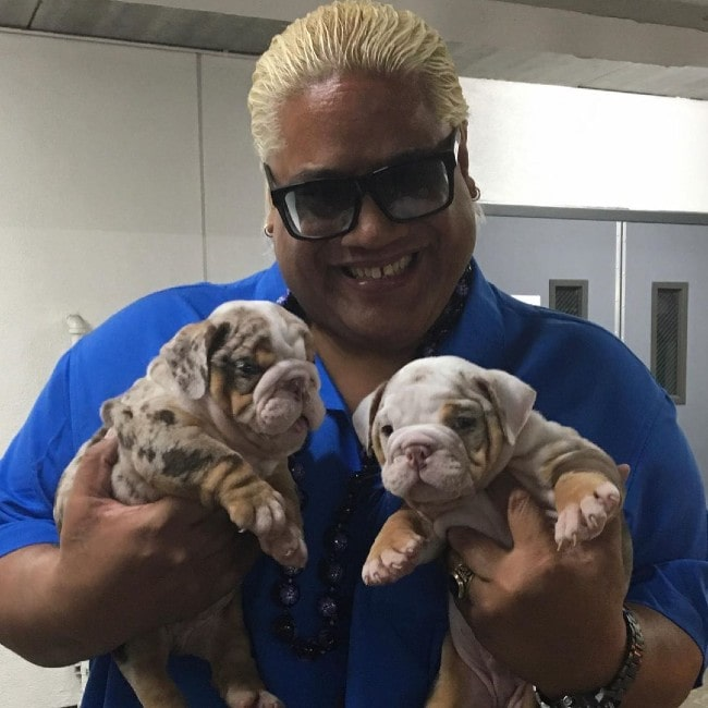 Rikishi with some puppies as seen in December 2019