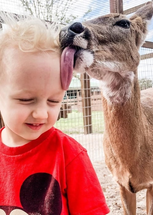 Duncan Ballinger being kissed and cuddled by a friendly deer in Westgate River Ranch Resort & Rodeo in February 2020
