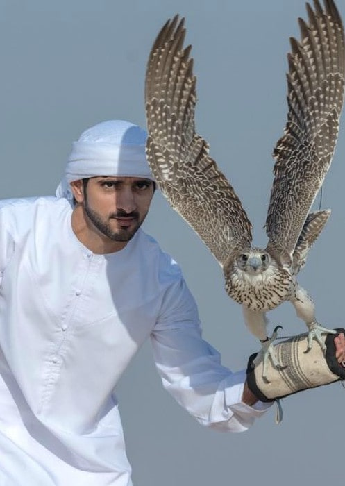 Fazza with a Falcon in November 14 2017