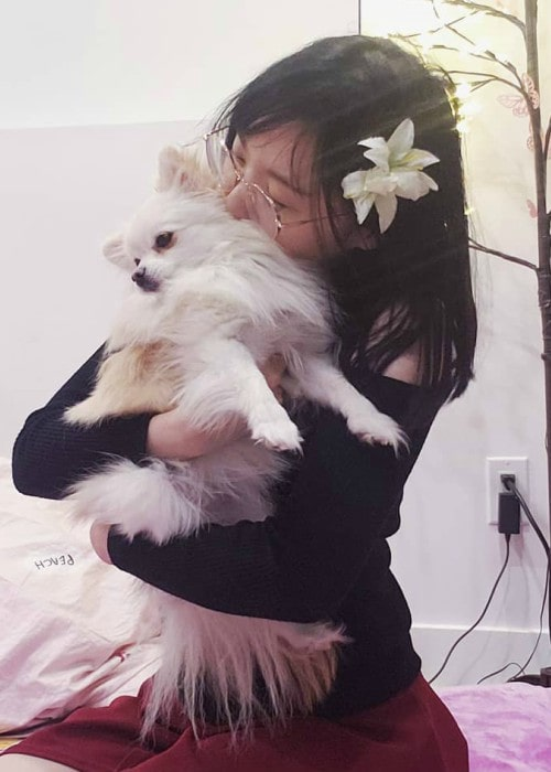 LilyPichu with her dog as seen in January 2020