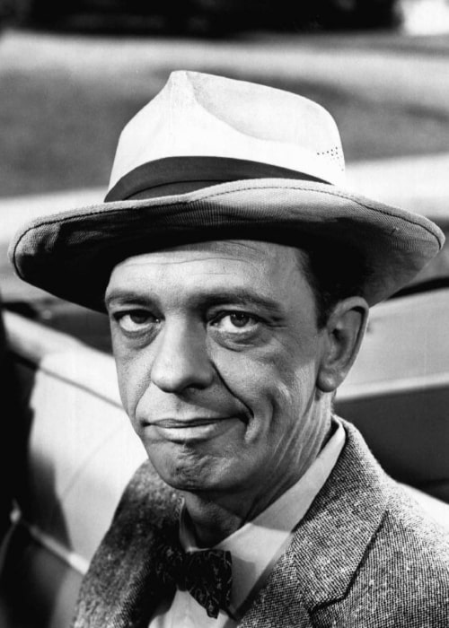 Don Knotts as seen in a picture