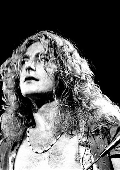 Robert Plant in his youth