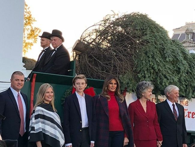 Barron Trump seen posing near the Wisconsin-grown White House Christmas tree in 2017