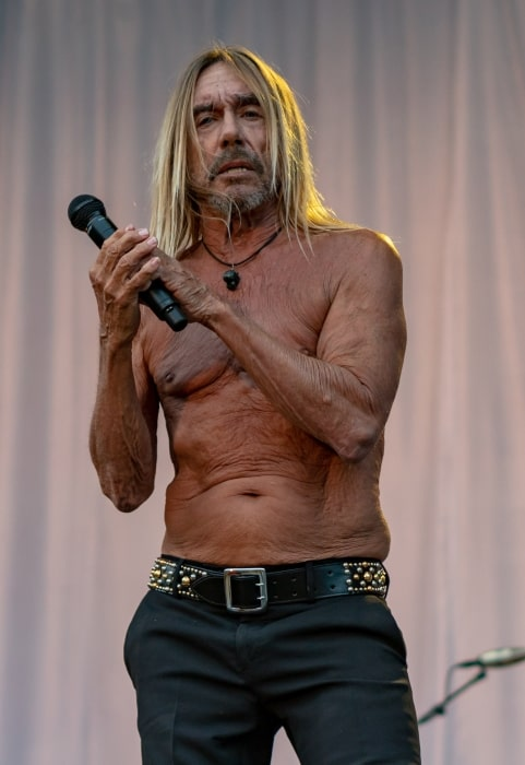 Iggy Pop performing in August 2018