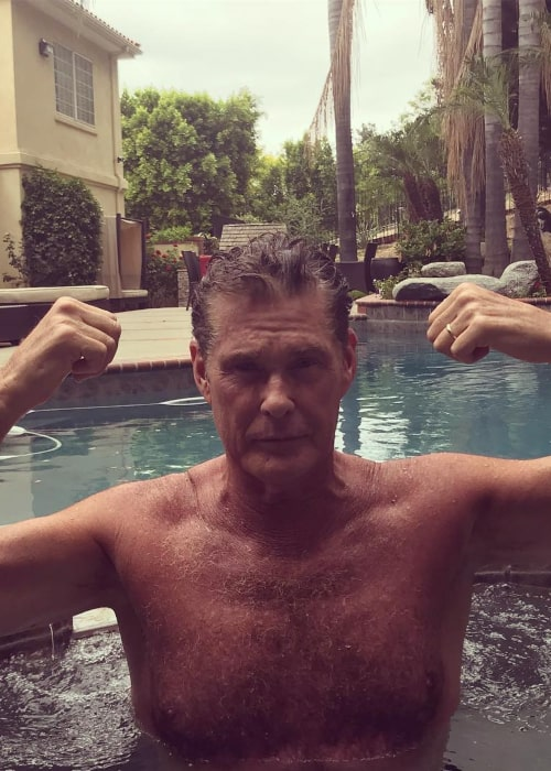 David Hasselhoff as seen in an Instagram Post in May 2018