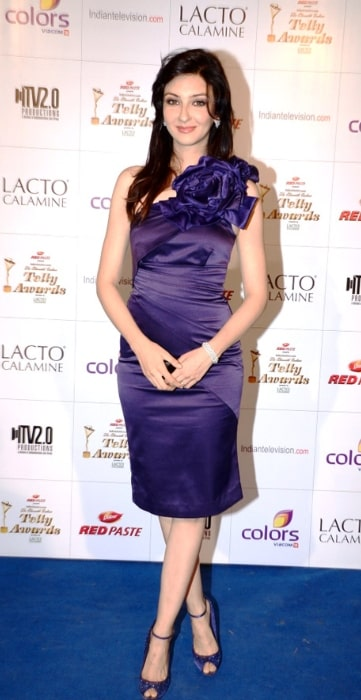 Saumya Tandon as seen while posing for the camera at Colors Indian Telly Awards in June 2012
