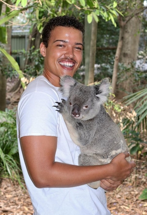 Bradley Constant as seen while smiling for a picture while holding a koala in Brisbane, Queensland, Australia in November 2020