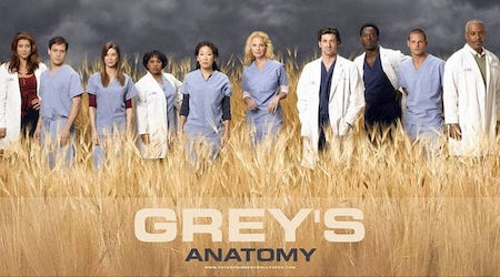 Grey's Anatomy Series Cast, Actors
