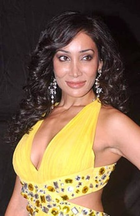 Sofia Hayat pictured at Colors Indian Telly Awards in 2012