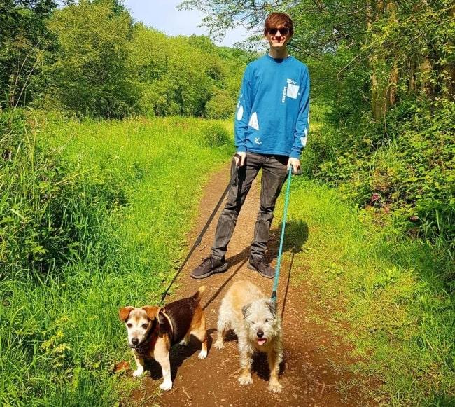 JackSucksAtLife having fun walking dogs in June 2020