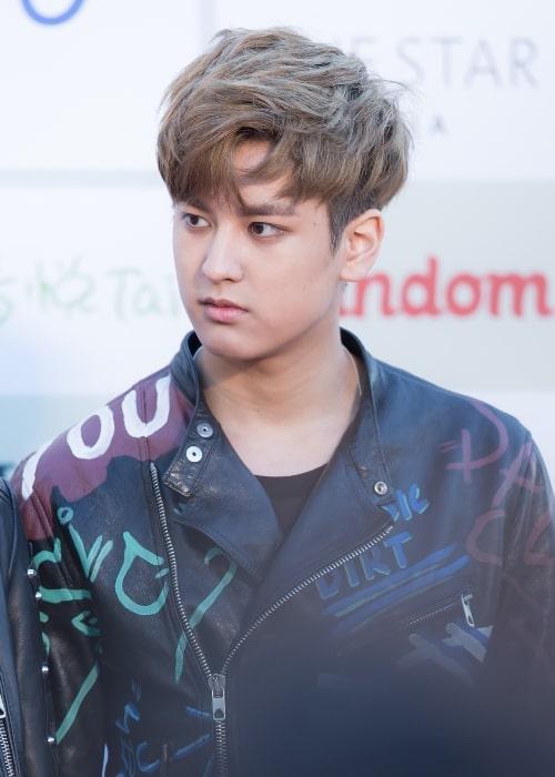 iKON's Chan-woo at the 2016 Gaon Chart K-pop Awards red carpet event